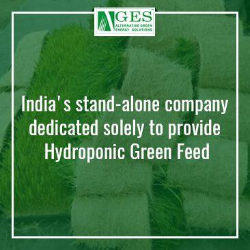 Alternative Green Energy Solution
