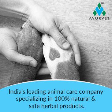 Ayurvet Limited, Animal Heathcare Company