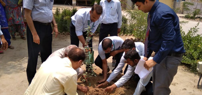 Sanjeevani Project By Mobius Foundation