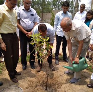 Mobius Foundation leading the charge for sustainability awareness